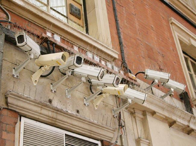 Большое количество камер на все виды